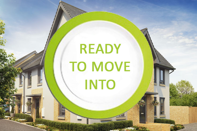 morpeth ready to move into