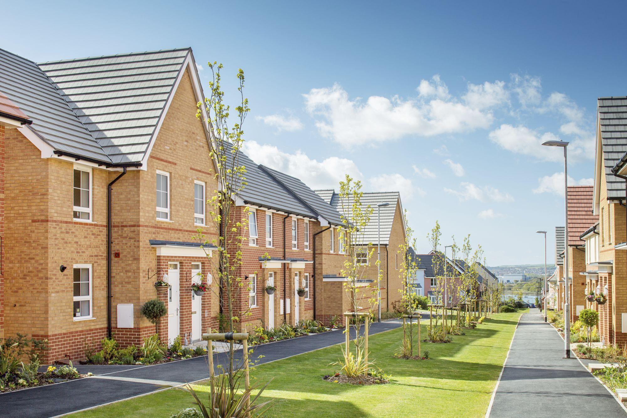 New Build Homes in Whippingham